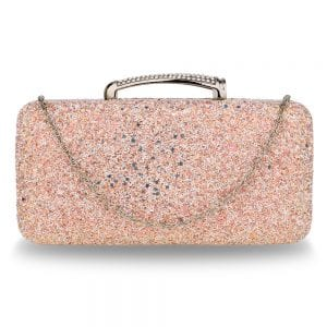 AGC00368 - Champagne Glitter Evening Wedding Clutch Box